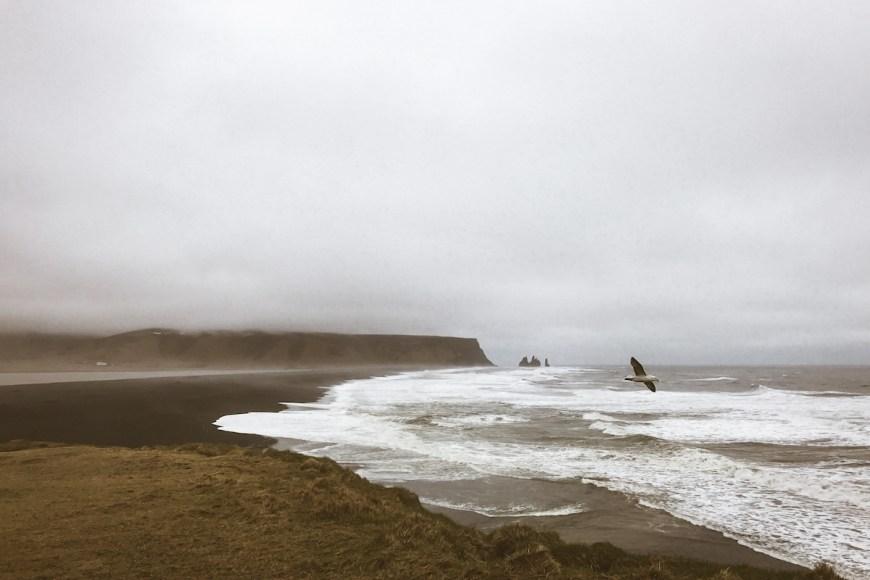 Playa Reynisfjara y Vik al fondo