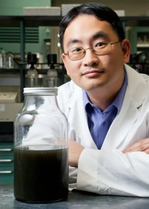 image of Wei Zheng, senior research scientist.