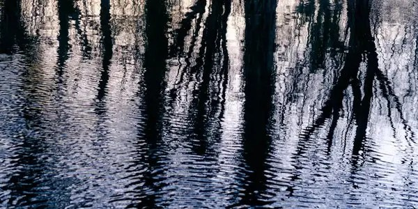 rippled-reflections image