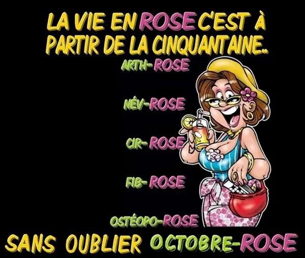 La-Vie-en-Rose poster