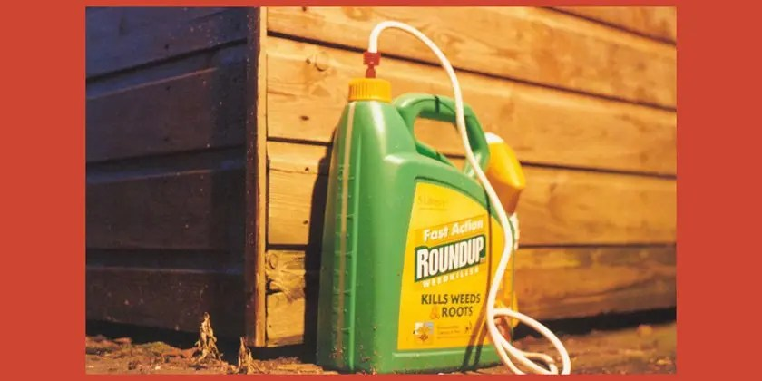 Glyphosate studies: expert opinion proves a systematic misinterpretation