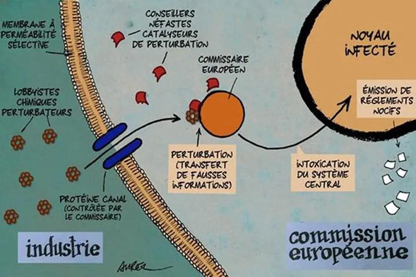 Les perturbateurs endocriniens et la Commission Européenne