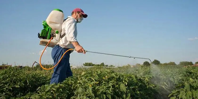 image of Pesticides Residues
