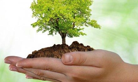 Convocatoria para el programa Tecnología en gestión de recursos naturales con el Sena