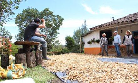 Avances del proyecto +Campo +Sostenible