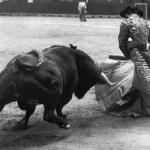 En tal día como hoy de 1905,nació en Santander el matador de toros Félix Rodríguez