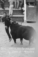 Fea cogida del toro del Aguardiente.