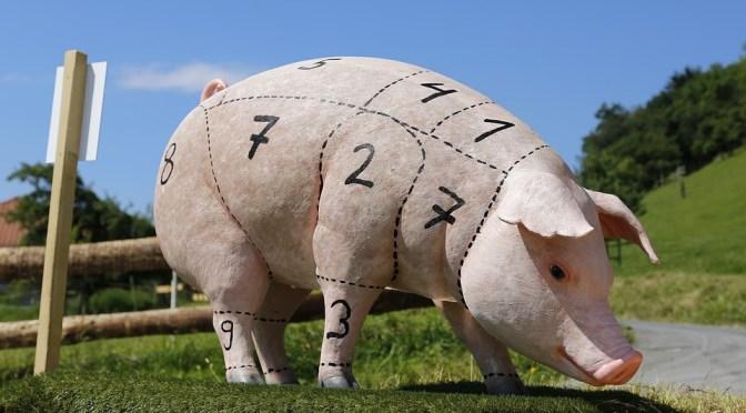 Carne de porco ajuda a preservar a massa muscular e os ossos em idosos
