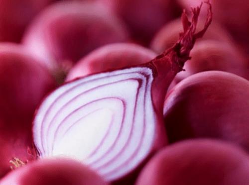Cebola (Allium cepa) e seus benefícios para a saúde