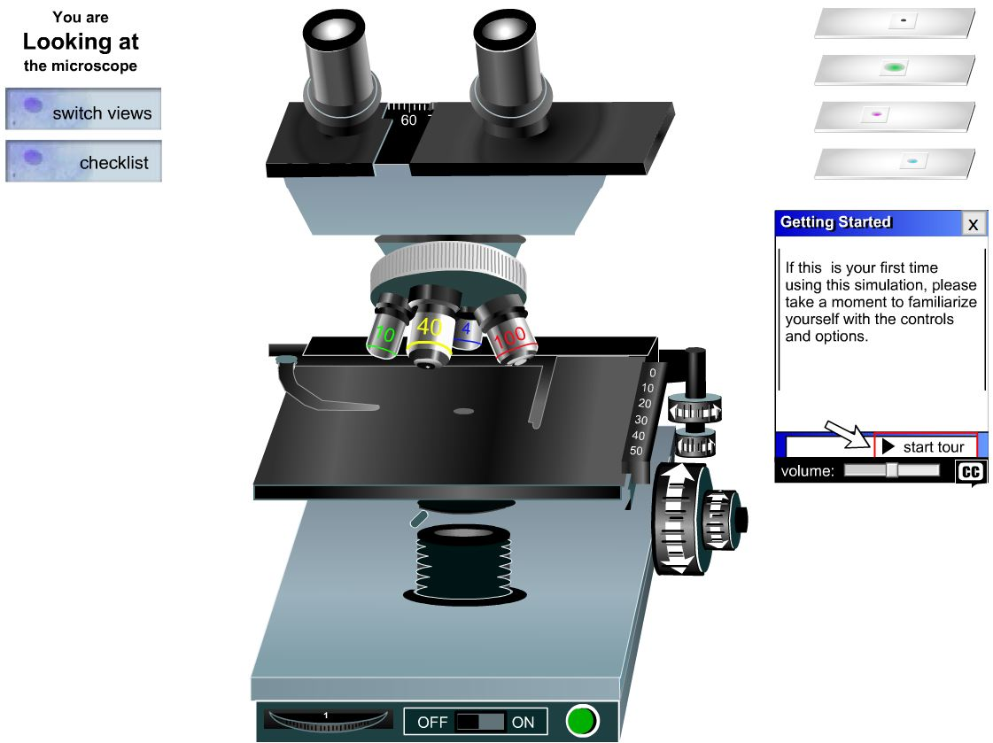 Microlab Assignoverview