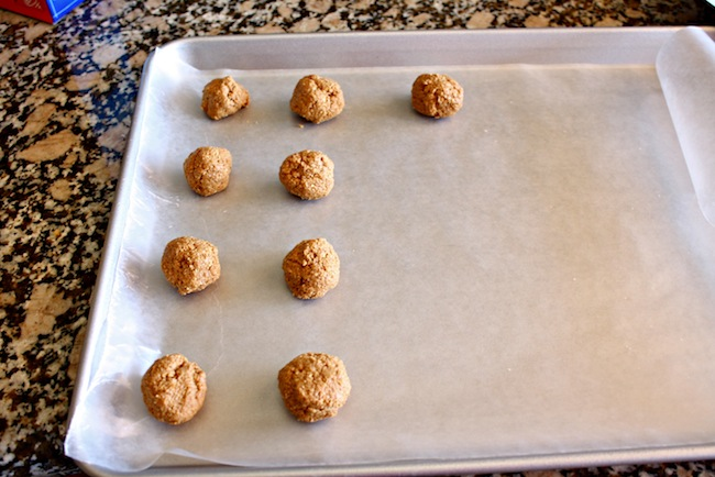 No Bake Graham Cracker Peanut Butter Balls