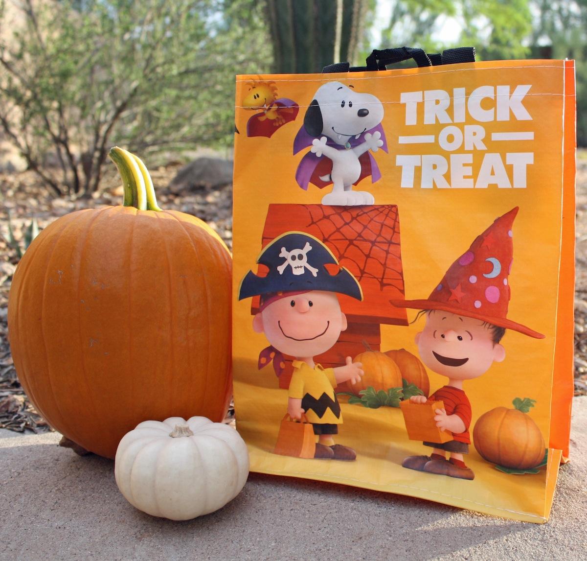 Albertsons Peanuts Trick or Treat bag