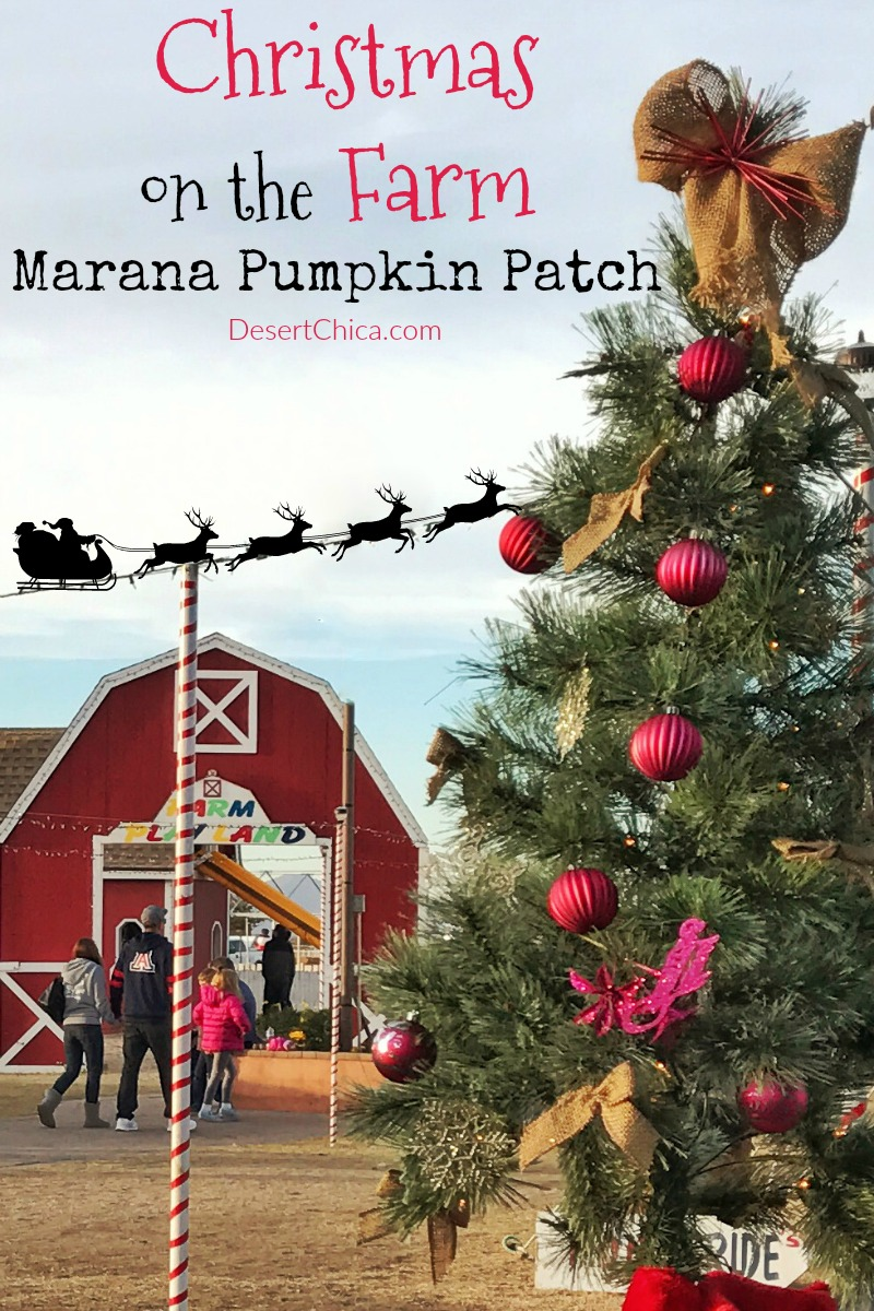 The newest holiday fun in Tucson is at Marana Christmas on the Farm and includes a train ride through Christmas lights and sledding!