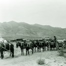 Freighting on the desert with mule team - Courtesy National Park Service, Death Valley National Park