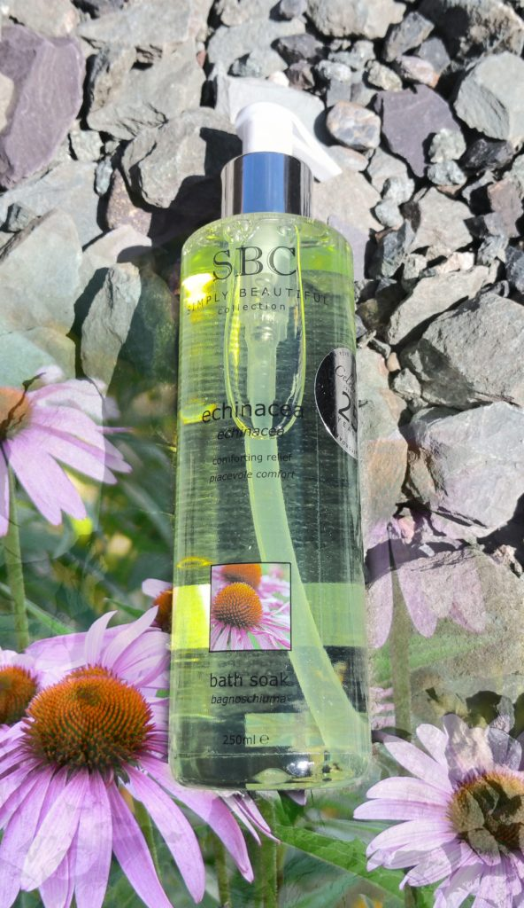 Discover The Power of Echinacea     SBC