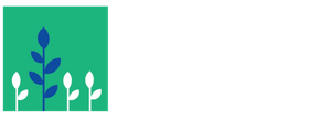 montessori school alternative education