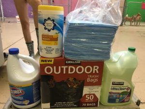 bleach, cleaning wipes, cleaning products, garbage bags, puppy pads