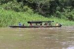 Le long de l'Amazone