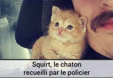 Squirt le chaton recueilli par le policier