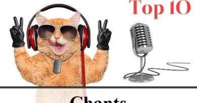 TOP 10 : Le meilleur miaulement de chat