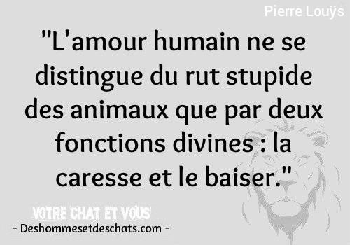 Citation Avec Photo Coluche Les Meilleurs Citations Phrase De Vie