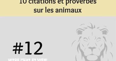 #12 – 10 citations et proverbes sur les animaux