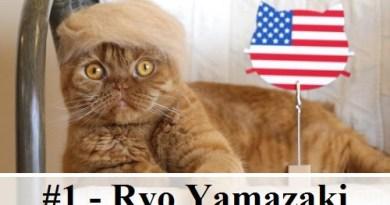 10 10 photos de chats dr les des hommes et des chats - Images de chats rigolos ...