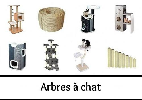 Arbre A Chat Pas Cher Arbre A Chat Geant Arbre A Chat Design Image