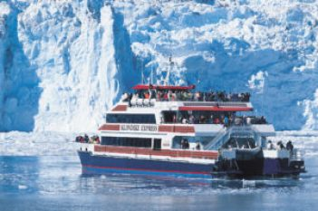 Guests aboard the Klondike Express are getting spectacular views of wildlife as they motor through the icebergs to the face of Surprise Glacier.