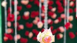 Rose Wedding Backdrop