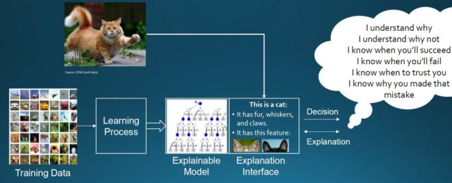 AI Models to explain decisions