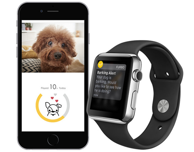 Furbo can be synced to smartphones or the Apple Watch Image via Furbo