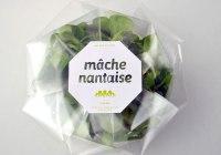La Mâche Nantaise par Mahaut Clément