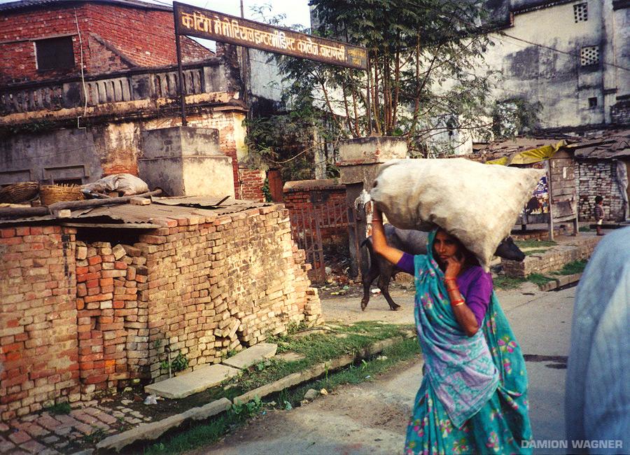 Bag On The Head India