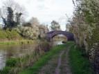 shropshire union canal 6