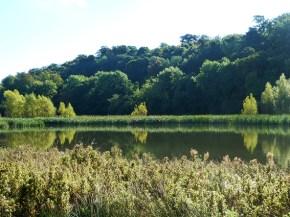 erddig-lake