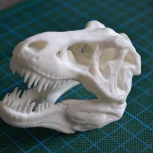 Design and more impression 3D Saint Nazaire crâne T-Rex