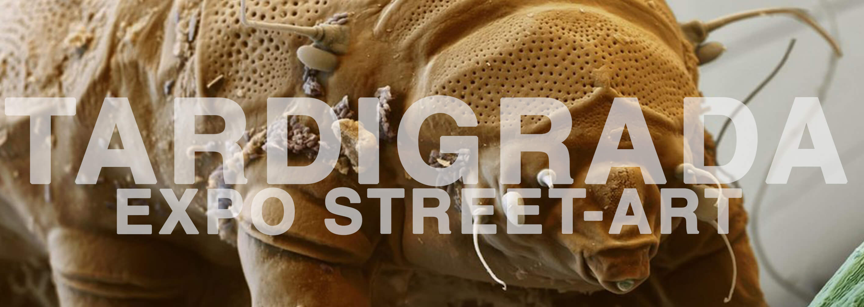 design and more tardigrade tardigrada exposition street art