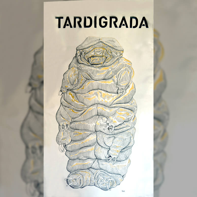 Design and more exposition Tardigrade expo street art