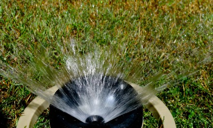 Irrigation for geeks – How I built my fully automated, open-source watering system