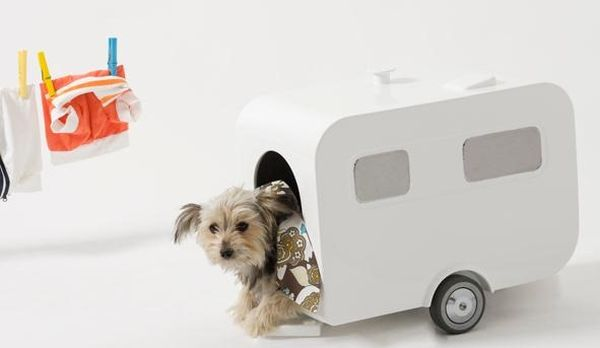 luxury-caravan-dog-house