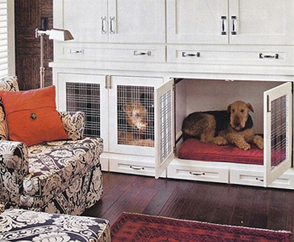 unused cabinet Pet Shelter