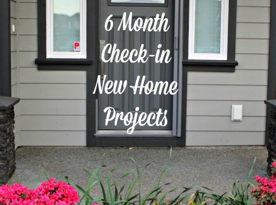 6 Month Update New Home Projects
