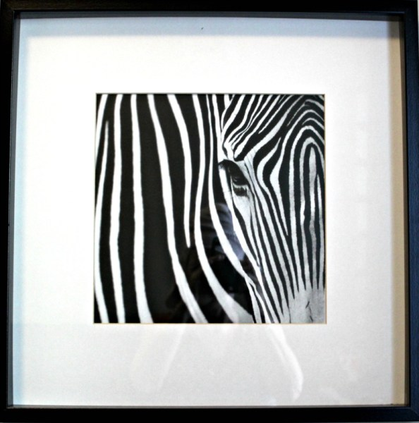 This is my craft room design for my $100 room challenge. I'm going to re-purpose these IKEA zebra pictures as part of the design