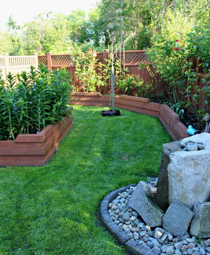 These are my new home updates, at the 6 month mark. This is my yard transformation challenge