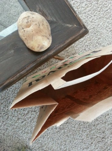 potato stamping - you'll need a potato, knife, paper bag, and paint.