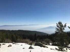 Sofia in Fog