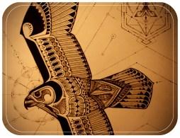 falconpreviewweb
