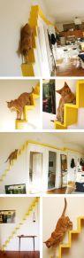 Área de passagem para gatos instalada na parede