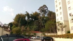 cameringo_20160911_155742